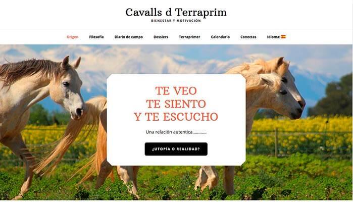 Diseño página web Terraprim.es
