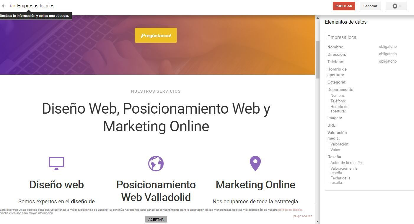 Posicionamiento SEO LOCAL con Search Console visual