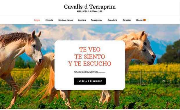 diseño página web terraprim.com